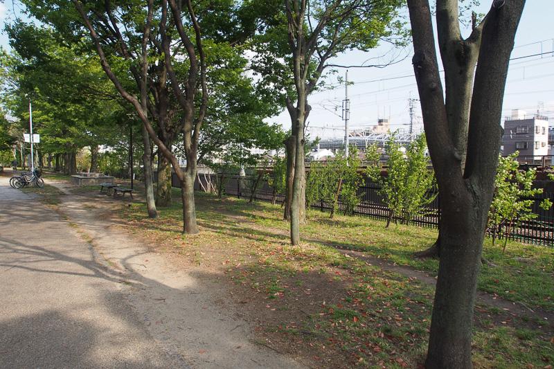 SLスチーム号の線路は梅小路公園の南側にある