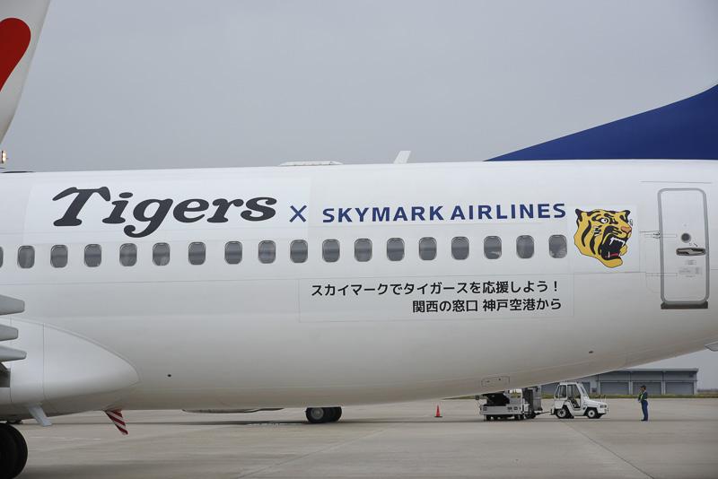 タイガースロゴは前方と後方に描かれている