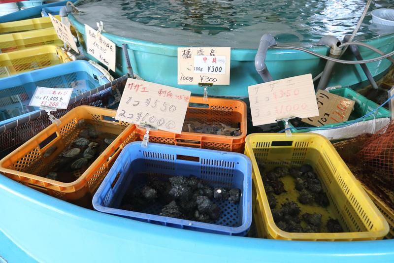 市場なので当然ここで地元の魚介類を購入できる