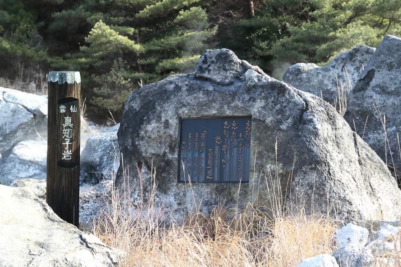 江戸時代の禁教の歴史を物語るキリシタン殉教碑、1964年(昭和39年)に公開された映画「君の名は(第3部)」のロケ地に建つ真知子岩など見どころの多い雲仙地獄ですが、最大の特徴にして見どころは、硫黄を含んだ強い酸性泉が湧き出ている場所にもかかわらず植物や動物が多い豊かな自然だと、ガイドの佐々木雅久さんは語ります。なお、遊歩道にしばしばネコが現れるのは地熱で地面が温かいからです