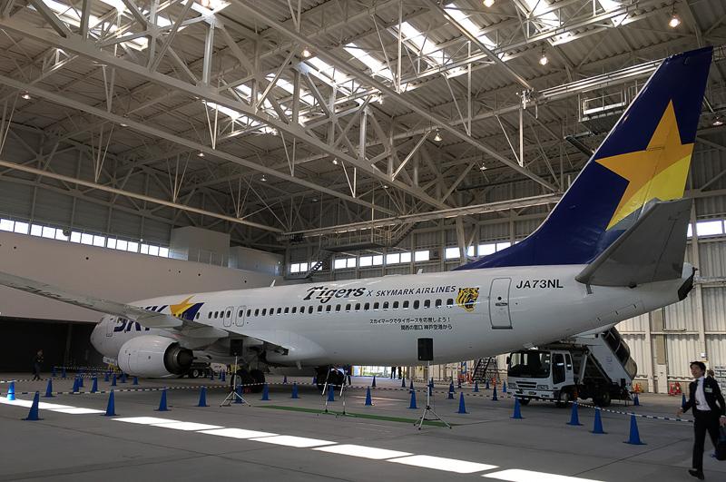 ボーイング 737-800型機に特別マーキングなどを行なっている