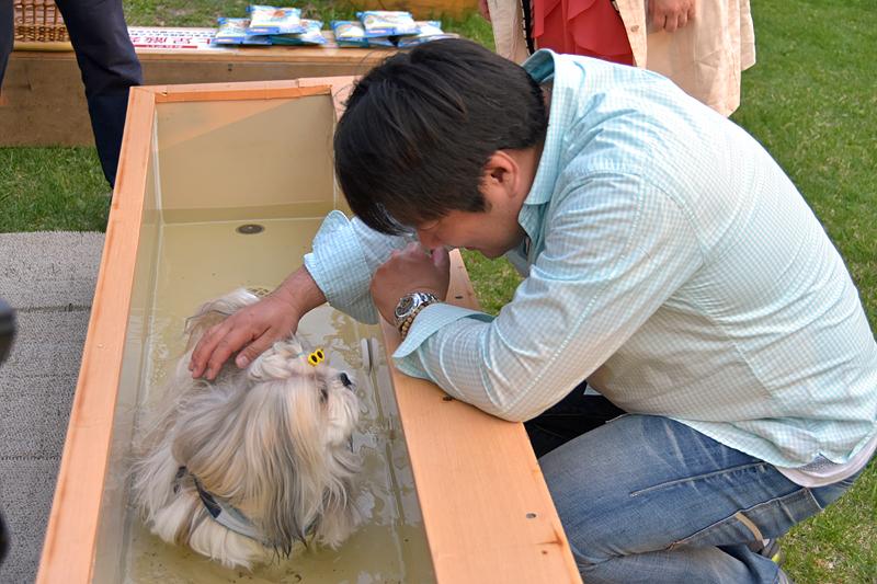 愛犬用足湯にペットを入れる参加者。犬がリラックスできる37℃に設定されている
