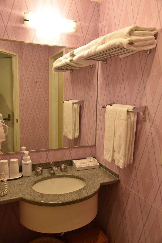 ヘアブラシ、歯ブラシ、アメニティキット(綿棒、コットン、ヘアバンド)。ヘアドライヤーなど一式はシックな雰囲気の洗面所に備え付けてある