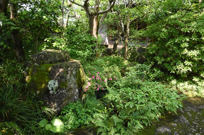 のどかな里山の一角に佇む虎屋 壺中庵。日本家屋らしさを感じる庭も印象的
