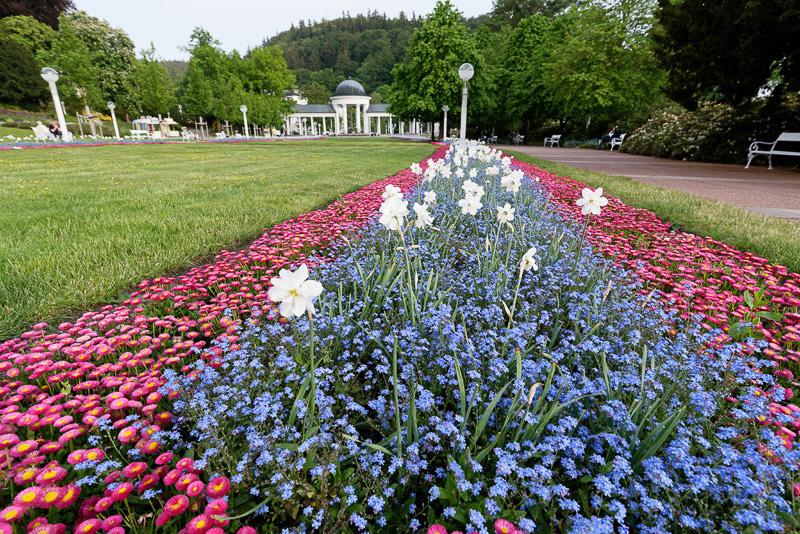 街のあちこちでは美しく植栽された花壇を見ることができる