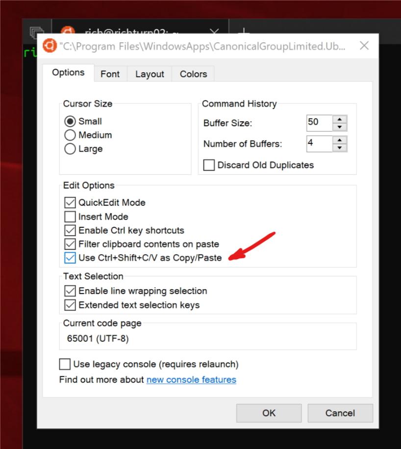 Linux/WSLコンソールがショートカットキーによるコピペに対応(同社ブログより引用)