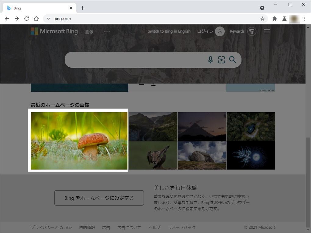 コマンドを実行すると、Webページ全体が暗転し、検索する領域を選択するモードに移行