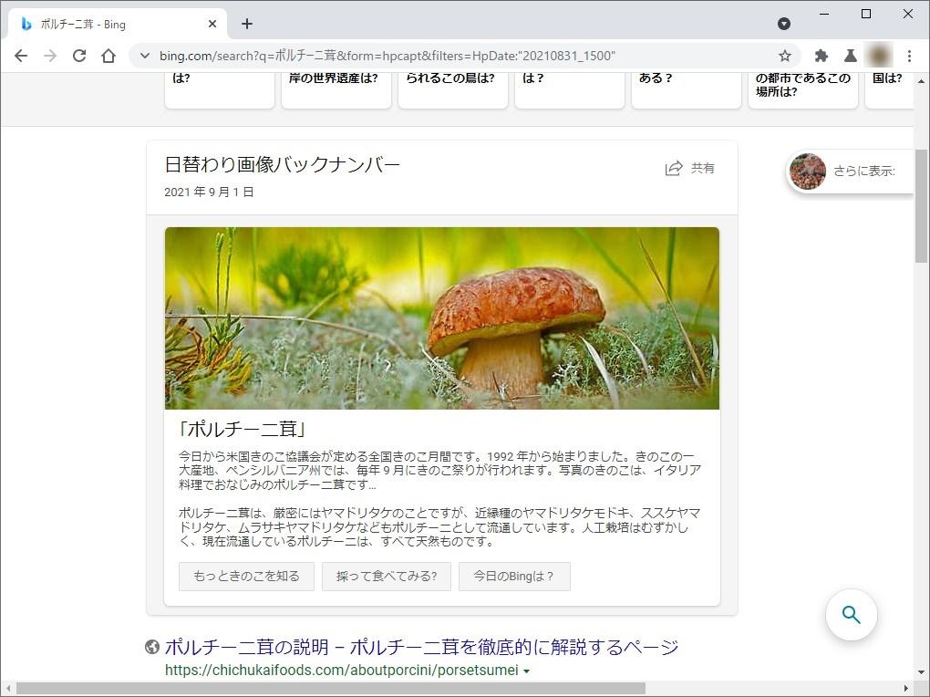 「Bing」の日替わり壁紙で試した様子。正解は「ポルチーニ茸」だが、「Google レンズ」の答えは「きのこ」だった