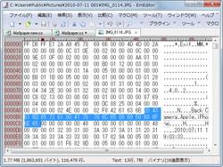 16進数表示の右側にアスキー表示が追加