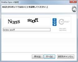 5. 最後にCAPTCHAを入力すれば設定は完了