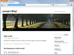 """本ソフトで配置した""""WordPress"""""""