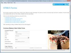 """""""HTML5 Forms""""のデモ。入力例の表示や、入力の検証などに対応する"""