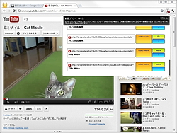 """""""YouTube""""では任意のフォーマットを選択できる"""