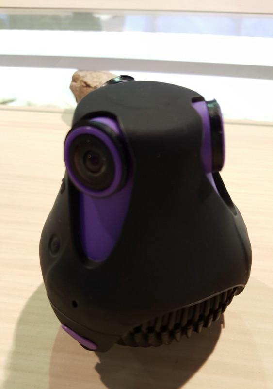 """フランスのGiroptic社の""""360Cam""""。カラフルでおしゃれな外見だ。防水を謳っている"""